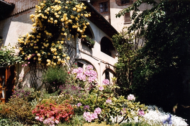 Le Camelie B&B Bed&Breakfast